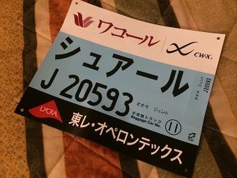 20140216kyotomarathon4