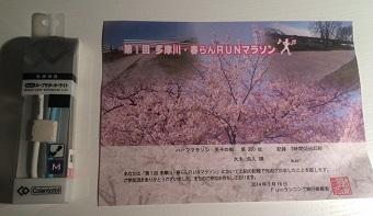 20140316tamagawahalf2